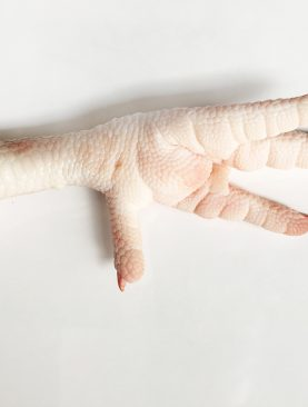 Processed Frozen Chicken Feet Supplier